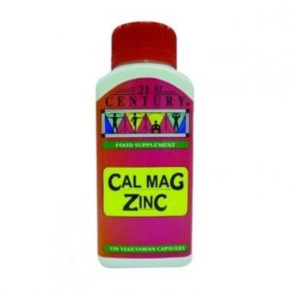 21ST CENTURY Cal Mag Zinc 120's