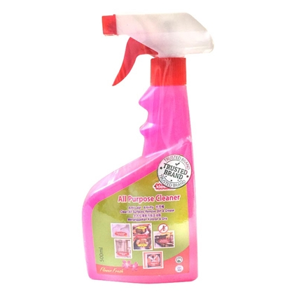 Kleenso All Purpose Cleaner 500ml